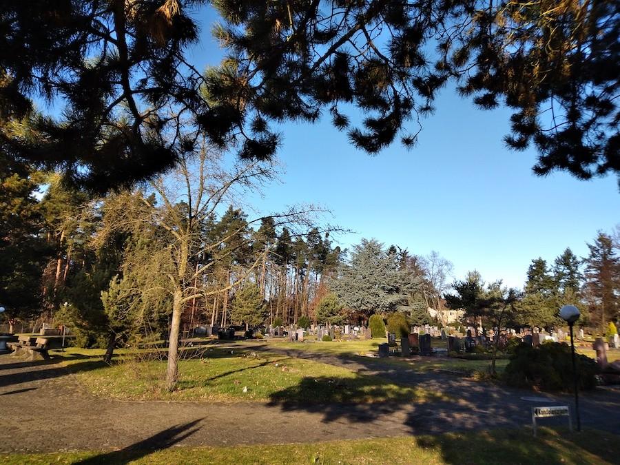Friedhof Friedrichstal