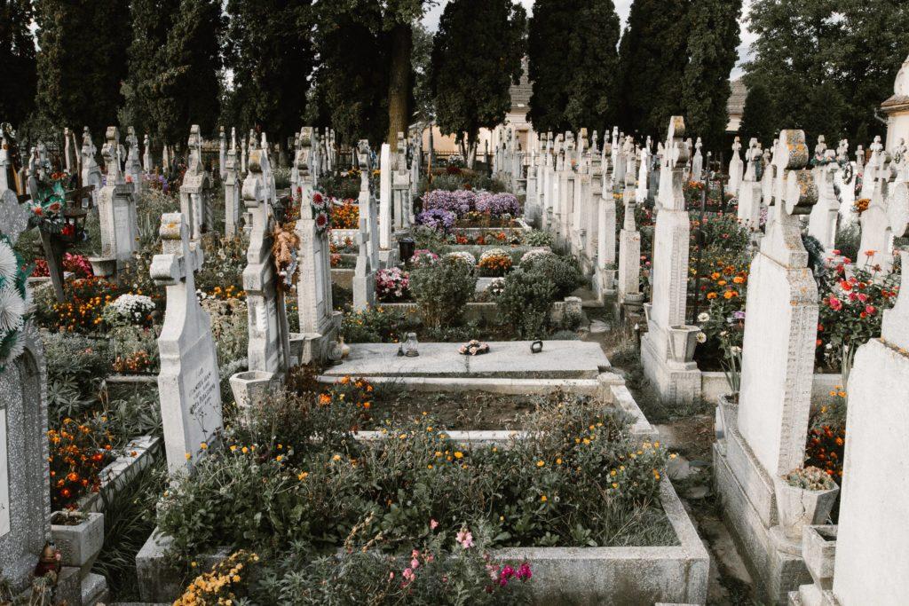 Grabpflegekosten